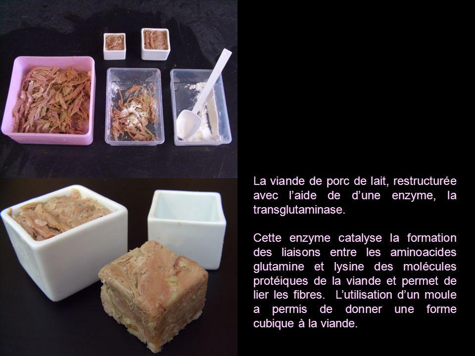 La viande de porc de lait, restructurée avec laide de dune enzyme, la transglutaminase. Cette enzyme catalyse la formation des liaisons entre les amin