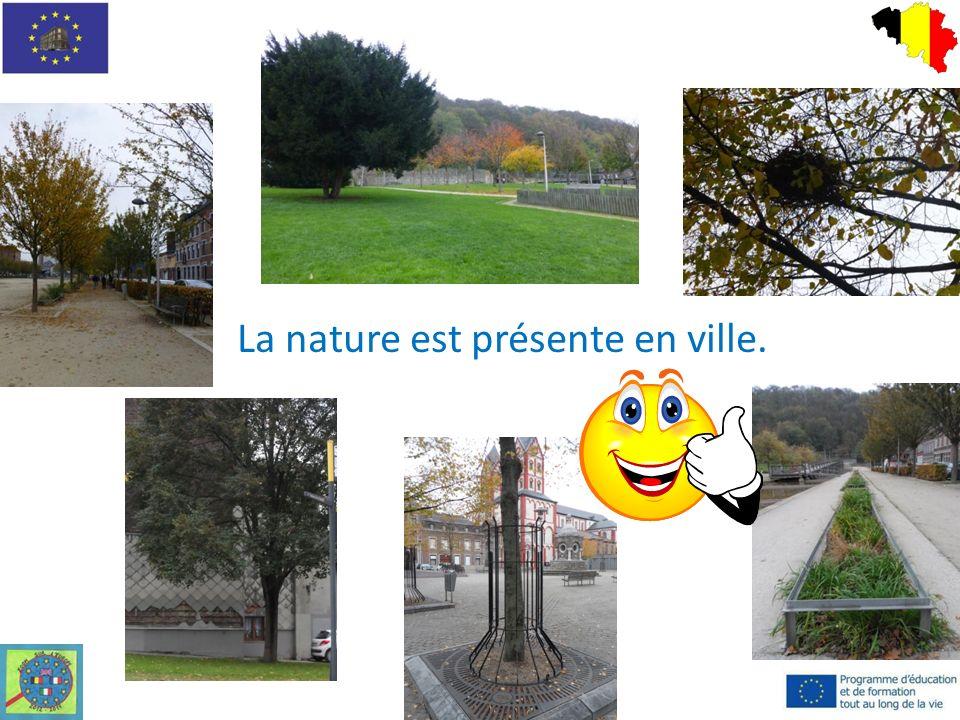 La nature est présente en ville.
