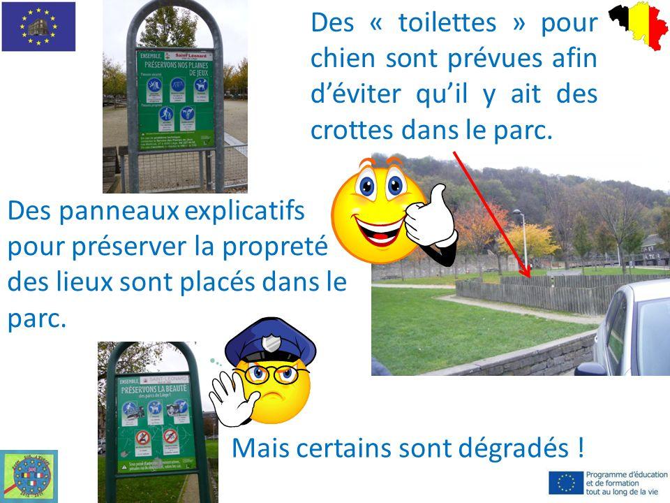 Des « toilettes » pour chien sont prévues afin déviter quil y ait des crottes dans le parc.