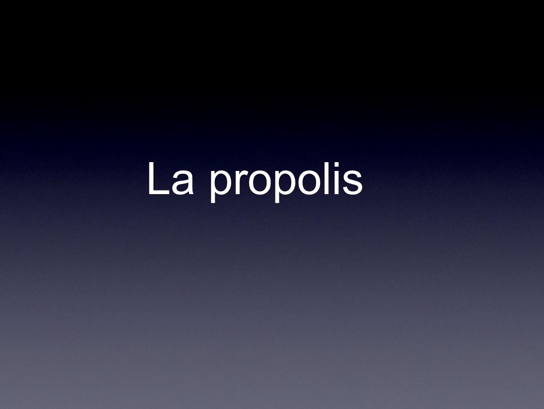 Plan Labeille produit la propolis Lhomme récolte la propolis Composition Propriétés Indications Forme et posologie Recettes
