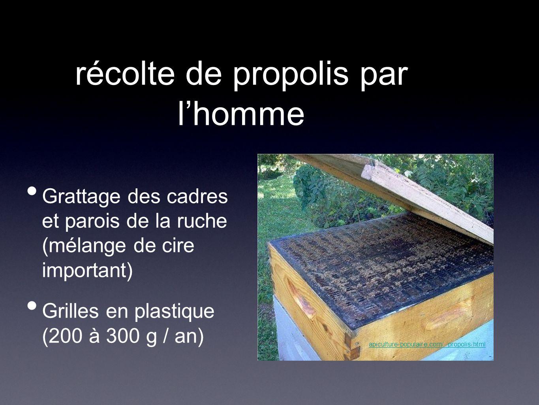 récolte de propolis par lhomme Grattage des cadres et parois de la ruche (mélange de cire important) Grilles en plastique (200 à 300 g / an) apiculture-populaire.com/ propolis.html