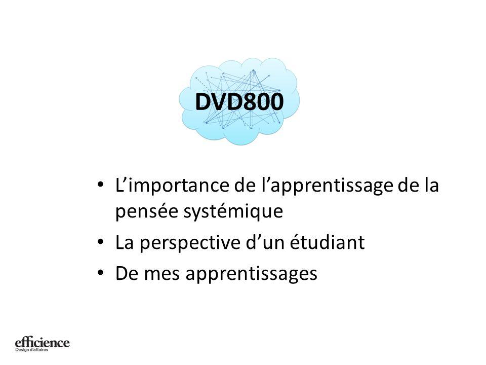 Limportance de lapprentissage de la pensée systémique DVD800