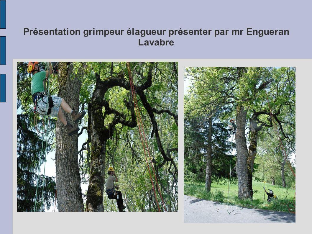 Présentation grimpeur élagueur présenter par mr Engueran Lavabre