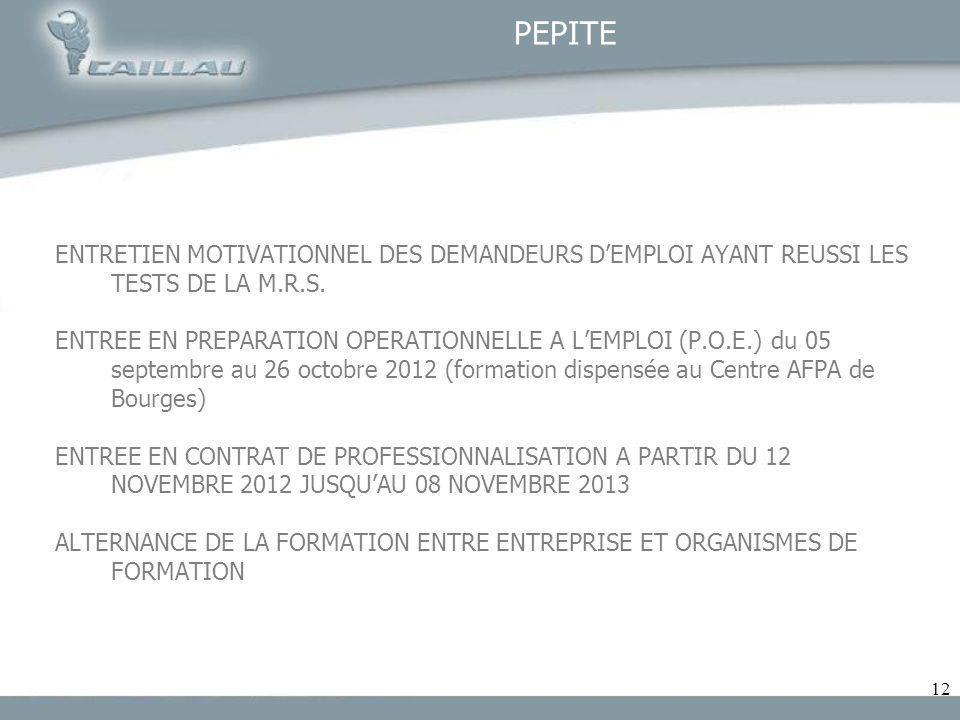 12 PEPITE ENTRETIEN MOTIVATIONNEL DES DEMANDEURS DEMPLOI AYANT REUSSI LES TESTS DE LA M.R.S. ENTREE EN PREPARATION OPERATIONNELLE A LEMPLOI (P.O.E.) d