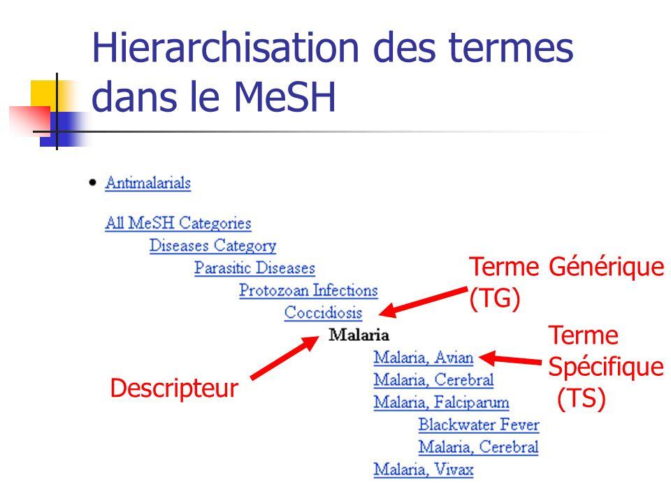 Hierarchisation des termes dans le MeSH Terme Générique (TG) Terme Spécifique (TS) Descripteur