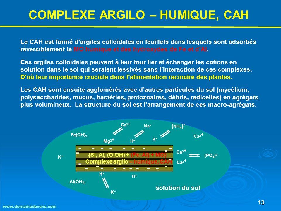 13 - - - - - -- --- -- - - - - - --- - - H+H+ K+K+ Mg 2 + Ca 2 + (PO 4 ) 2- ( NH 4 ) + Ca 2+ Na + K+K+ K+K+ H+H+ H+H+ Ca 2 + solution du sol Fe(OH) 3 Al(OH) 3 {Si, Al, (O,OH) + (Fe, Al) + MO} Complexe argilo – humique, CAH Le CAH est formé dargiles colloïdales en feuillets dans lesquels sont adsorbés réversiblement la MO humique et des hydroxydes de Fe et dAl.