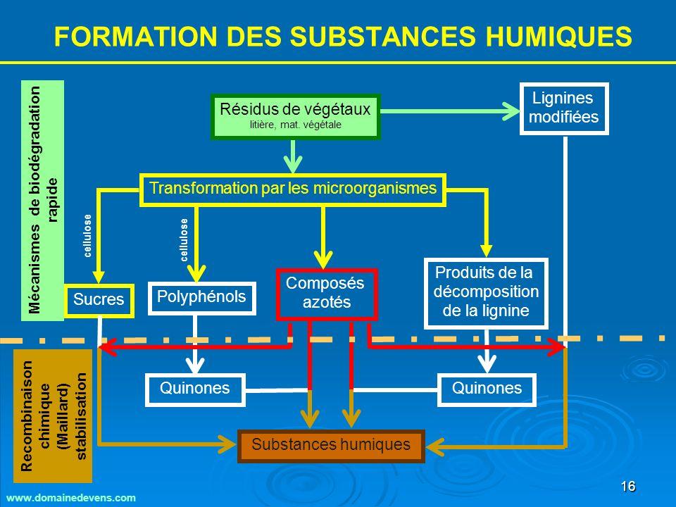 16 FORMATION DES SUBSTANCES HUMIQUES Résidus de végétaux litière, mat.