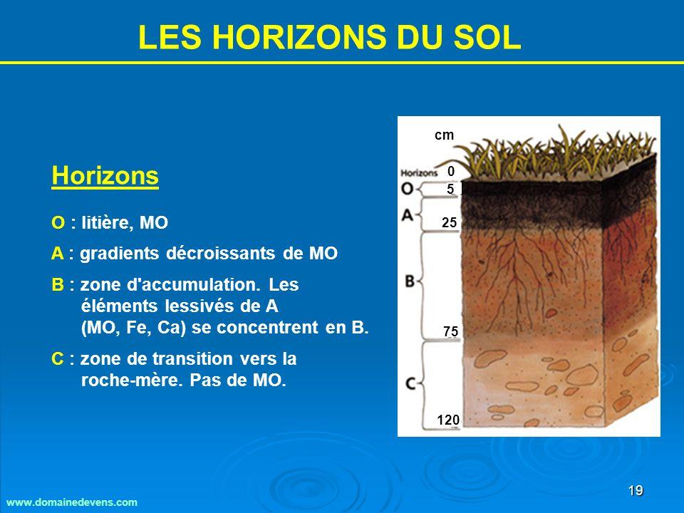 19 LES HORIZONS DU SOL Horizons O : litière, MO A : gradients décroissants de MO B : zone d accumulation.