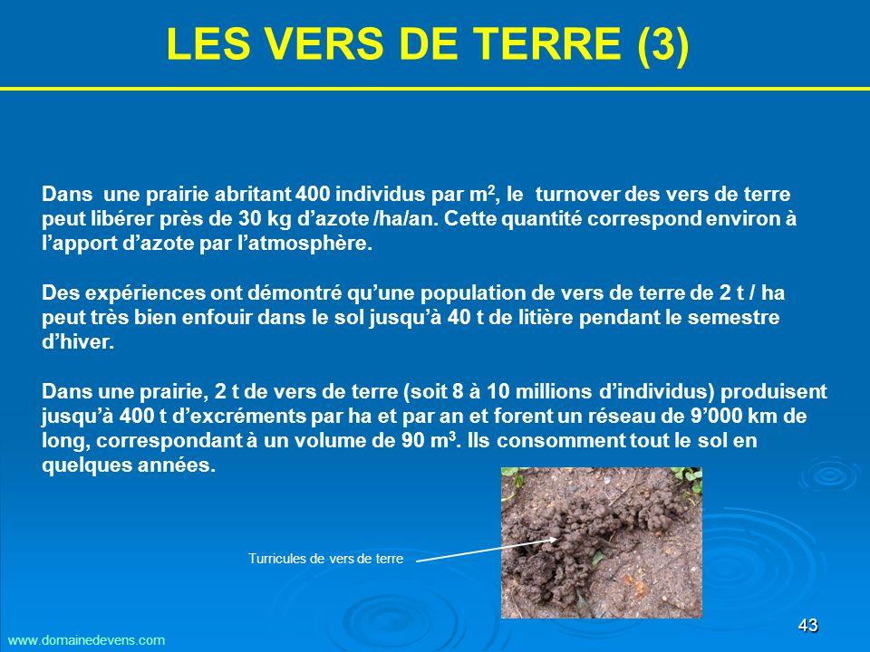 43 LES VERS DE TERRE (3) Dans une prairie abritant 400 individus par m 2, le turnover des vers de terre peut libérer près de 30 kg dazote /ha/an.