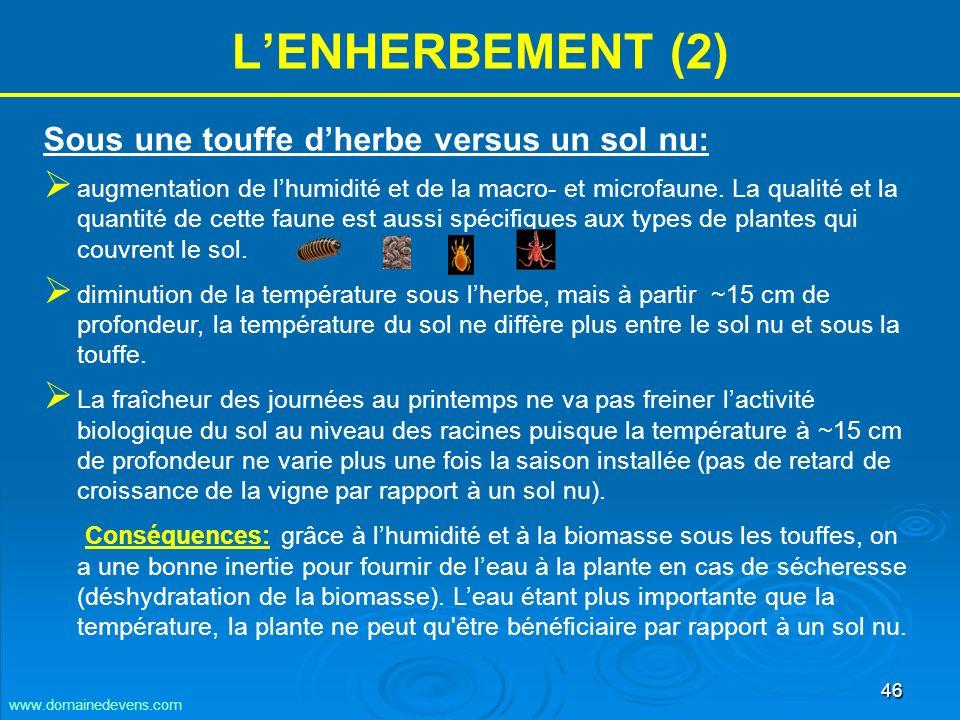 46 LENHERBEMENT (2) Sous une touffe dherbe versus un sol nu: augmentation de lhumidité et de la macro- et microfaune.