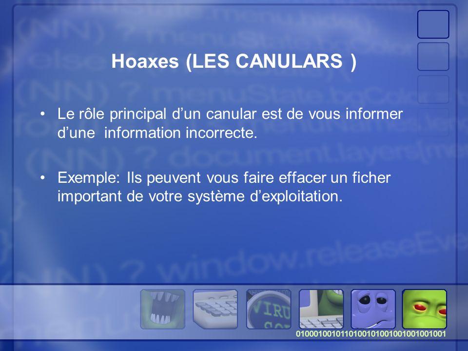 Hoaxes (LES CANULARS ) Le rôle principal dun canular est de vous informer dune information incorrecte.
