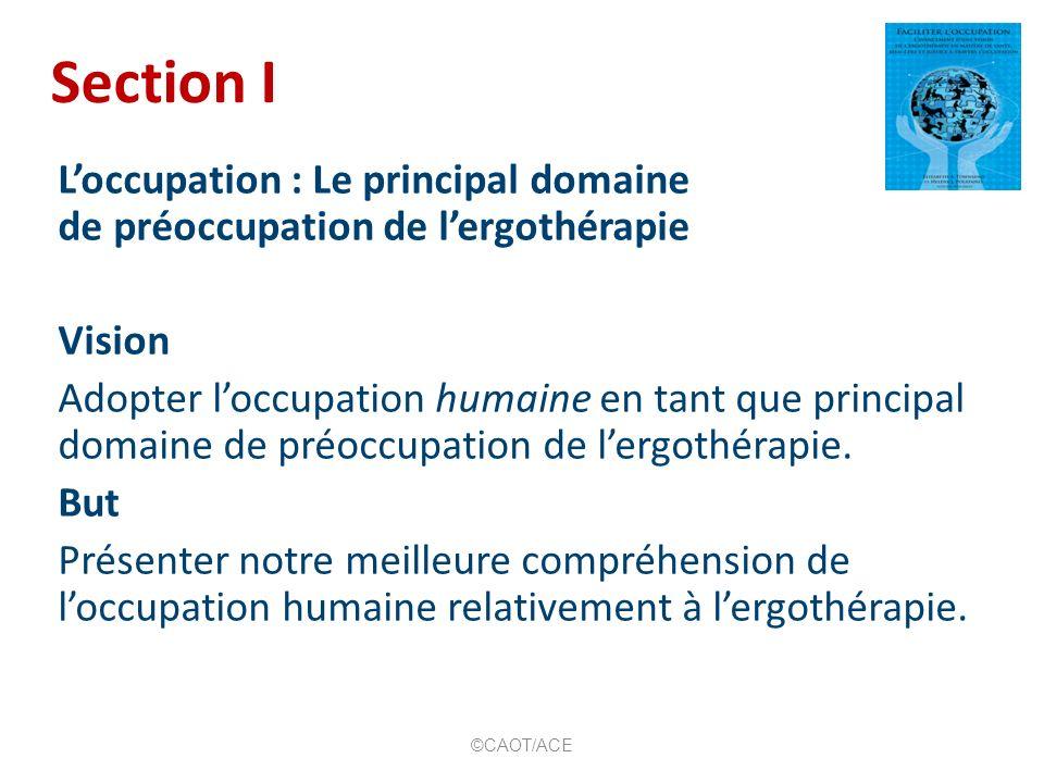 Section I Loccupation : Le principal domaine de préoccupation de lergothérapie Vision Adopter loccupation humaine en tant que principal domaine de préoccupation de lergothérapie.