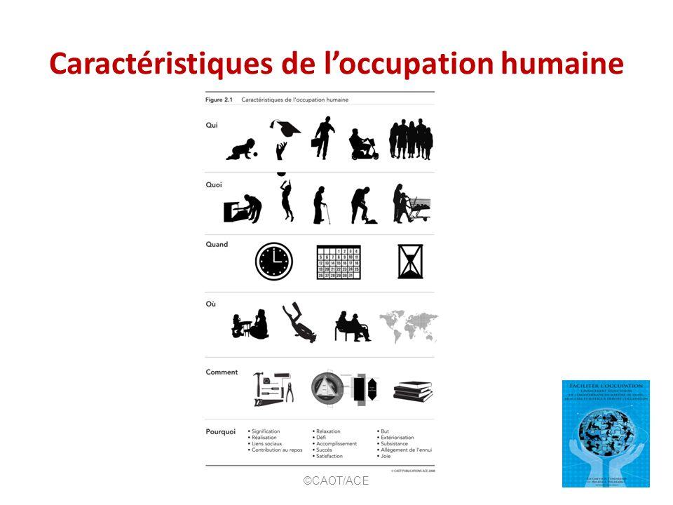 Caractéristiques de loccupation humaine ©CAOT/ACE
