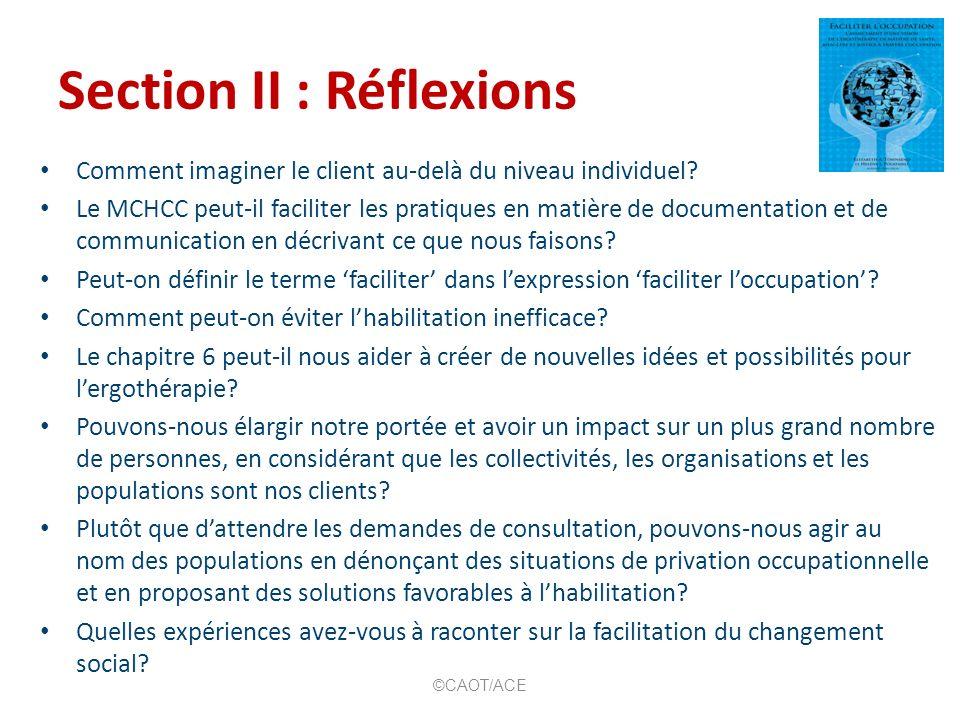 Section II : Réflexions Comment imaginer le client au-delà du niveau individuel? Le MCHCC peut-il faciliter les pratiques en matière de documentation