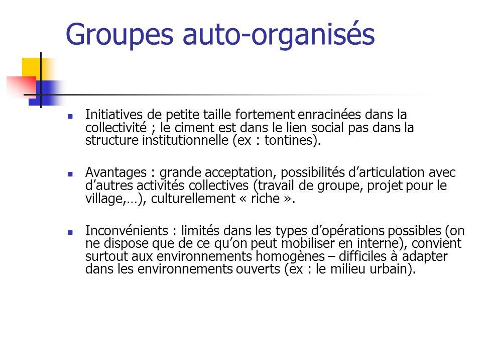 Groupes auto-organisés Initiatives de petite taille fortement enracinées dans la collectivité ; le ciment est dans le lien social pas dans la structur