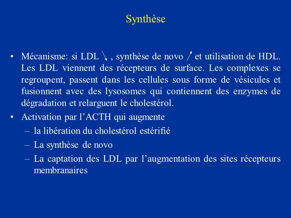 Synthèse Mécanisme: si LDL, synthèse de novo et utilisation de HDL. Les LDL viennent des récepteurs de surface. Les complexes se regroupent, passent d