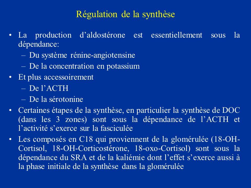 Régulation de la synthèse La production daldostérone est essentiellement sous la dépendance: –Du système rénine-angiotensine –De la concentration en p