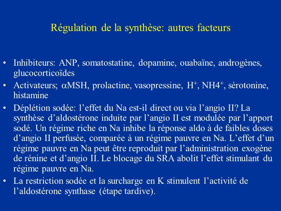 Régulation de la synthèse: autres facteurs Inhibiteurs: ANP, somatostatine, dopamine, ouabaïne, androgènes, glucocorticoïdes Activateurs; MSH, prolact