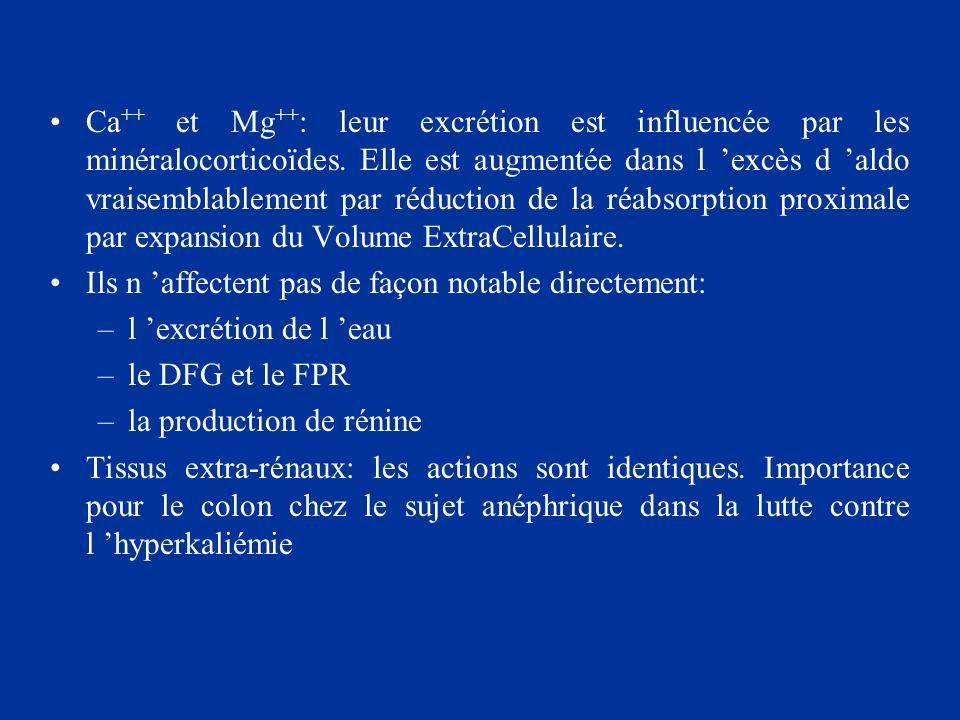 Ca ++ et Mg ++ : leur excrétion est influencée par les minéralocorticoïdes. Elle est augmentée dans l excès d aldo vraisemblablement par réduction de