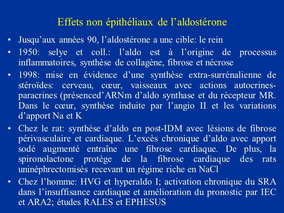 Effets non épithéliaux de laldostérone Jusquaux années 90, laldostérone a une cible: le rein 1950: selye et coll.: laldo est à lorigine de processus i
