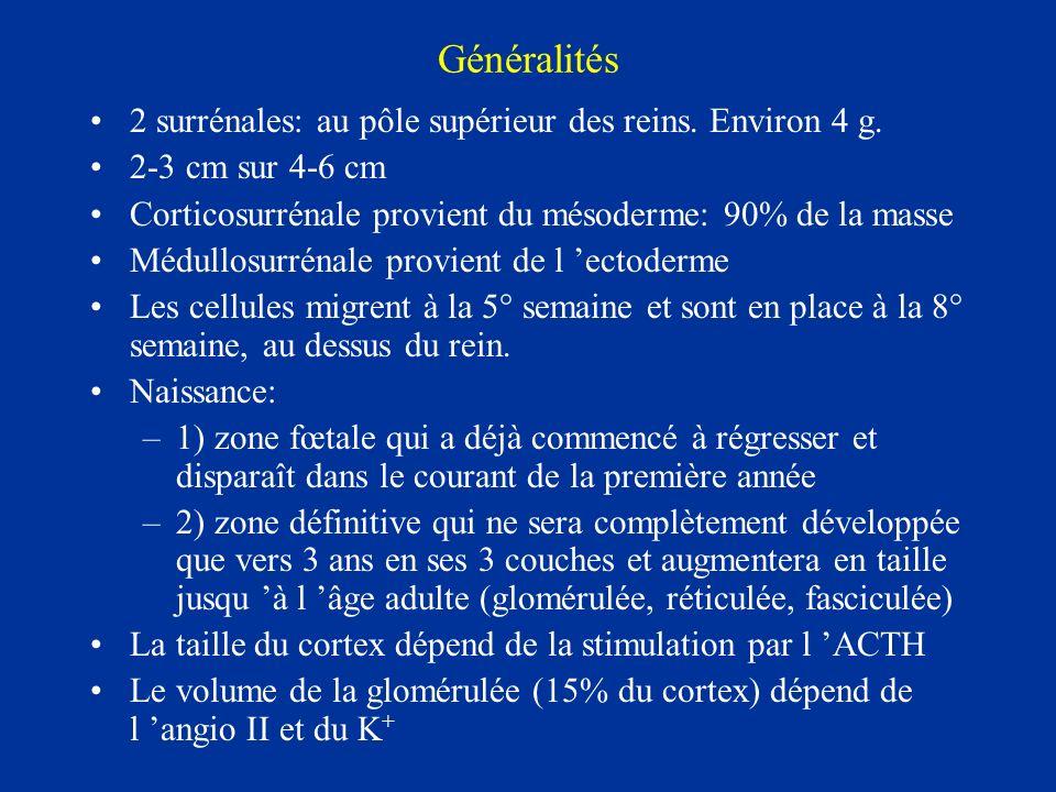 Généralités 2 surrénales: au pôle supérieur des reins. Environ 4 g. 2-3 cm sur 4-6 cm Corticosurrénale provient du mésoderme: 90% de la masse Médullos
