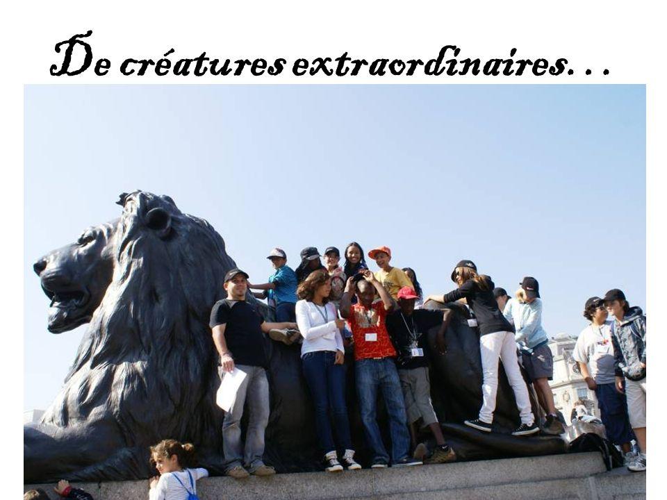De créatures extraordinaires…
