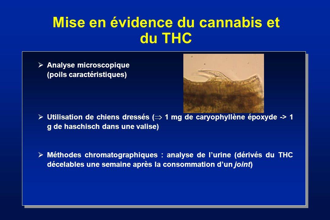 Constituants du cannabis Limite de la teneur en THC : 0,3 % Acide THC (inactif) THC (actif) - CO 2 O OH