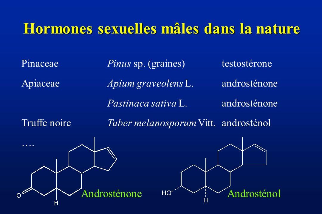 Cochons et truffes (Tuber melanosporum) Le 5 -androst-16-en-3 -ol est synthétisé dans les testicules du verrat et transféré dans leur salive Cette hormone attire et excite les truies Le 5 -androst-16-en-3 -ol se trouve dans les truffes (une truffe noire du Périgord en contient env.
