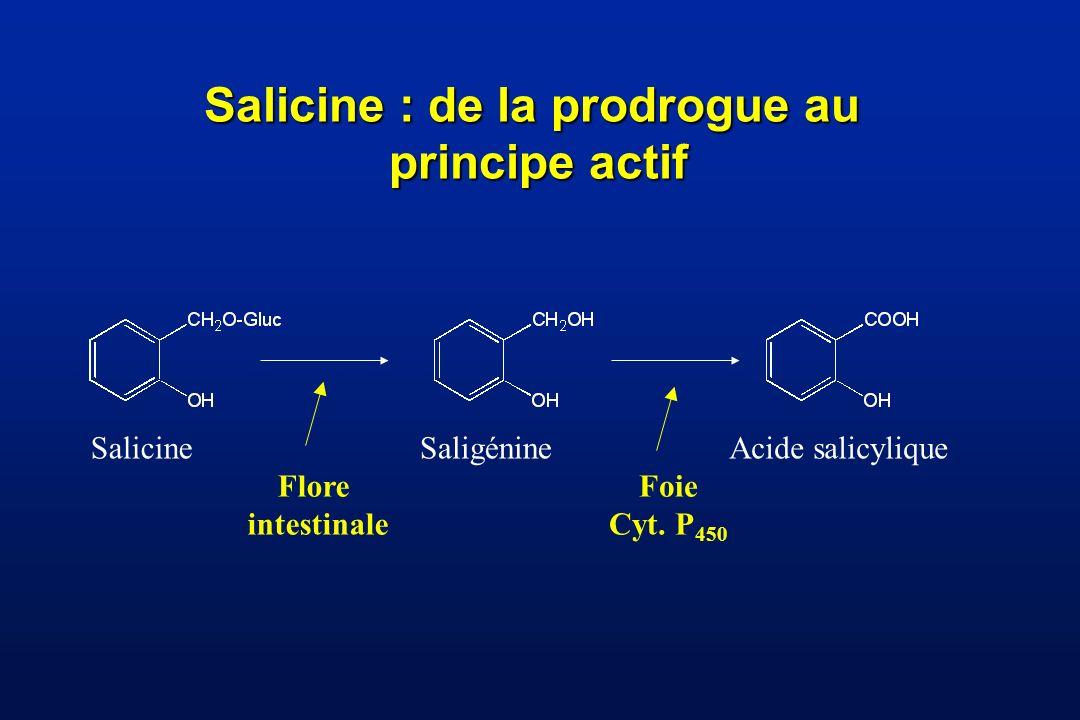 Salicine : de la prodrogue au principe actif SalicineSaligénine Flore intestinale Acide salicylique Foie Cyt.