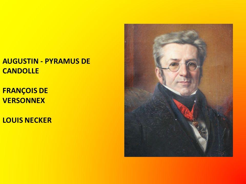 AUGUSTIN - PYRAMUS DE CANDOLLE FRANÇOIS DE VERSONNEX LOUIS NECKER