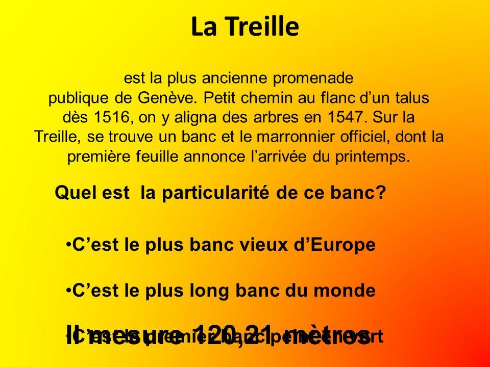 La Treille est la plus ancienne promenade publique de Genève.