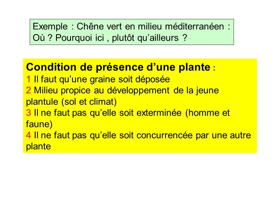 Exemple : Chêne vert en milieu méditerranéen : Où ? Pourquoi ici, plutôt quailleurs ? Condition de présence dune plante : 1 Il faut quune graine soit
