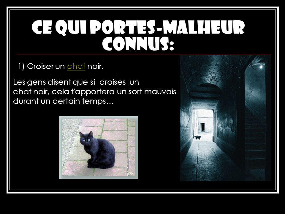 Ce qui Portes-MAlheur connus: 1) Croiser un chat noir.chat Les gens disent que si croises un chat noir, cela t'apportera un sort mauvais durant un cer