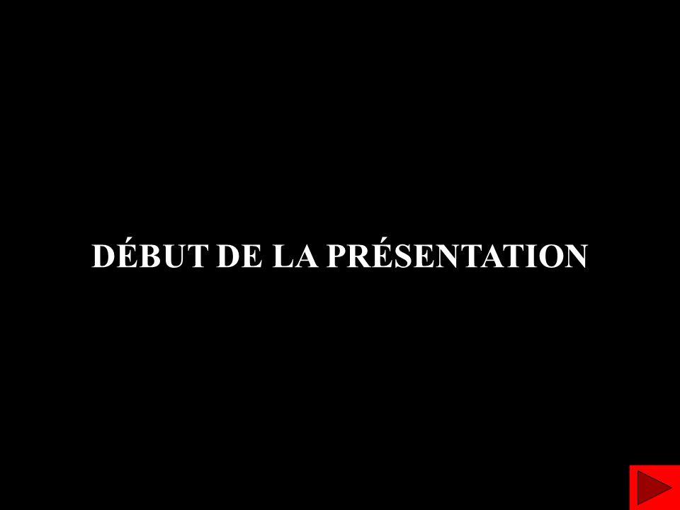 DÉBUT DE LA PRÉSENTATION