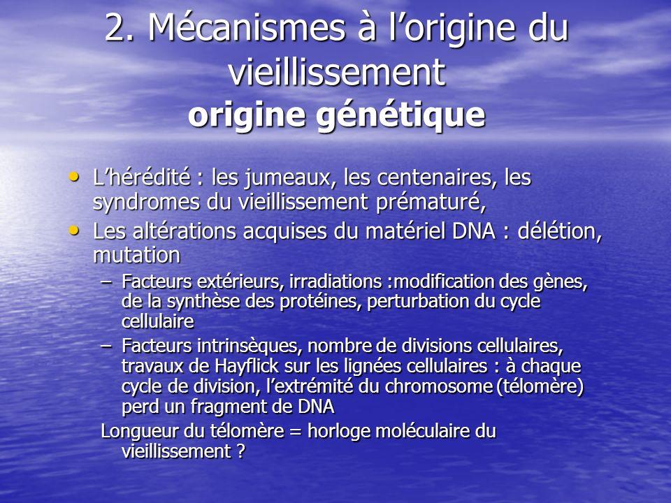 2. Mécanismes à lorigine du vieillissement origine génétique Lhérédité : les jumeaux, les centenaires, les syndromes du vieillissement prématuré, Lhér