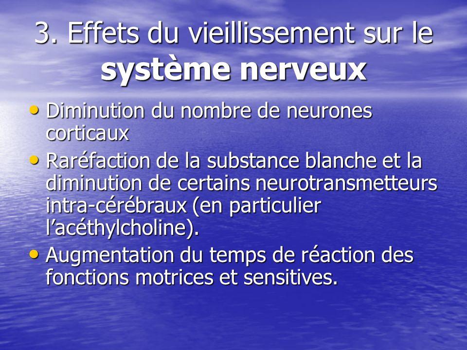 3. Effets du vieillissement sur le système nerveux Diminution du nombre de neurones corticaux Diminution du nombre de neurones corticaux Raréfaction d