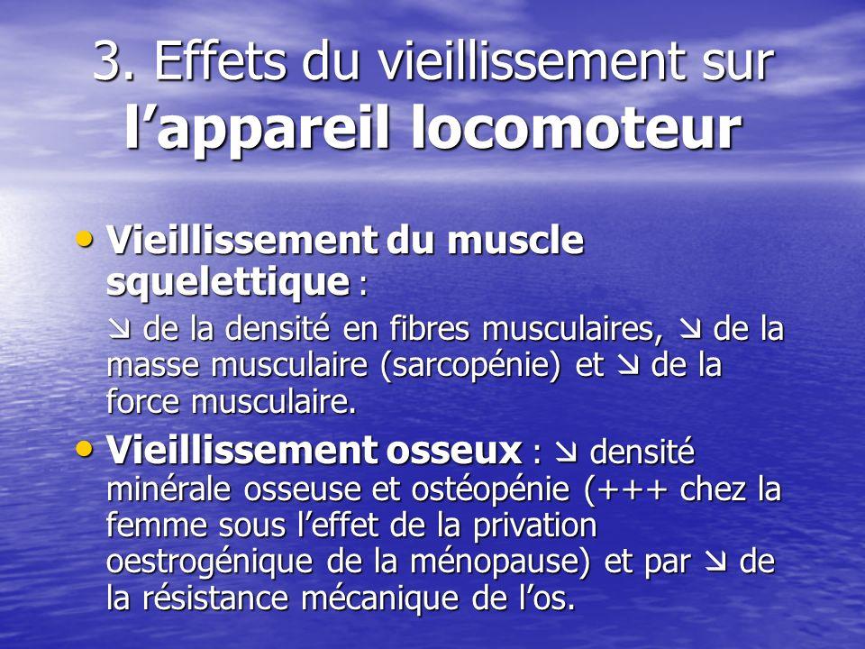 3. Effets du vieillissement sur lappareil locomoteur Vieillissement du muscle squelettique : Vieillissement du muscle squelettique : de la densité en