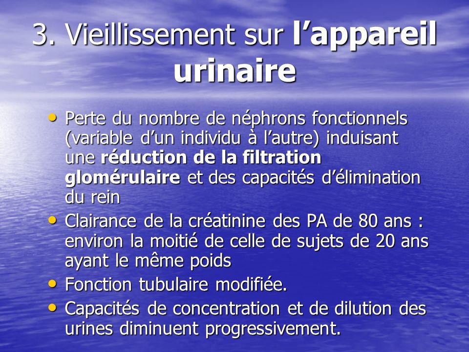 3. Vieillissement sur lappareil urinaire Perte du nombre de néphrons fonctionnels (variable dun individu à lautre) induisant une réduction de la filtr