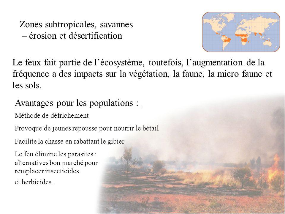 Pascal Peduzzi, Impacts des feux de forêt sur lenvironnement Impacts sur lenvironnement : Grandes quantités de CO2 dans l atmosphère Impacts sur les sols et la végétation.