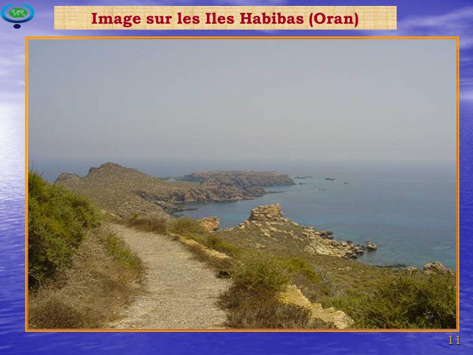11 Image sur les Iles Habibas (Oran)