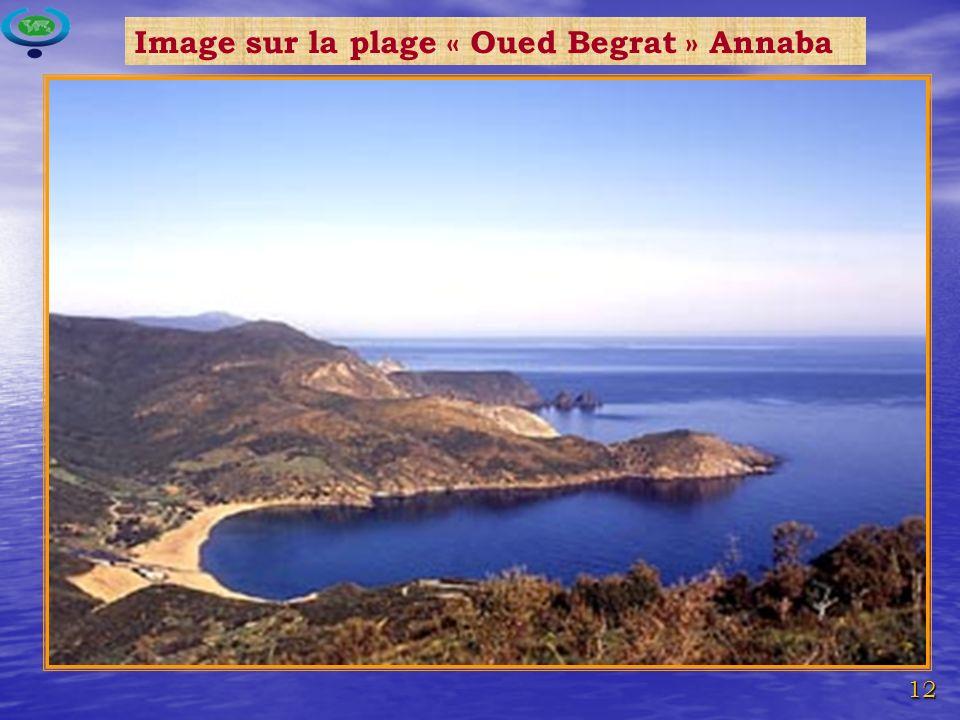 12 Image sur la plage « Oued Begrat » Annaba
