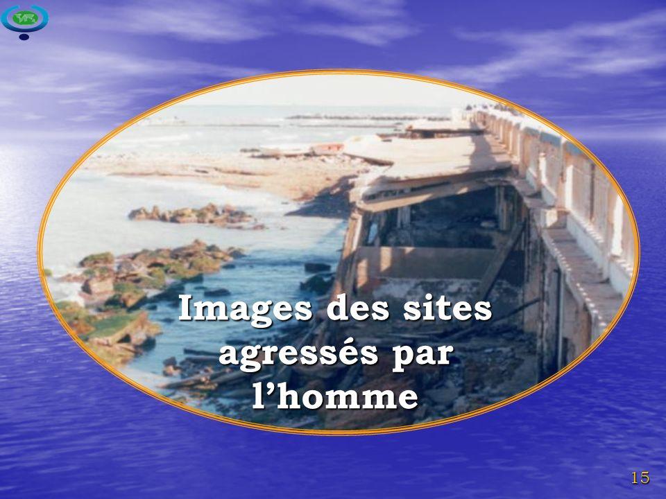 15 Images des sites agressés par lhomme