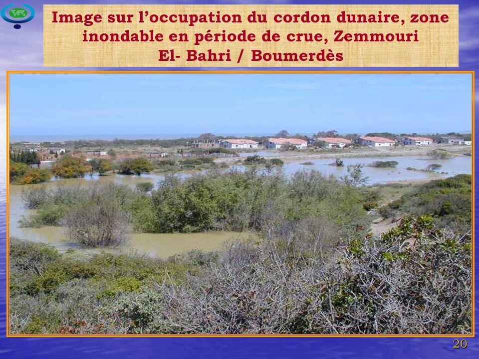20 Image sur loccupation du cordon dunaire, zone inondable en période de crue, Zemmouri El- Bahri / Boumerdès