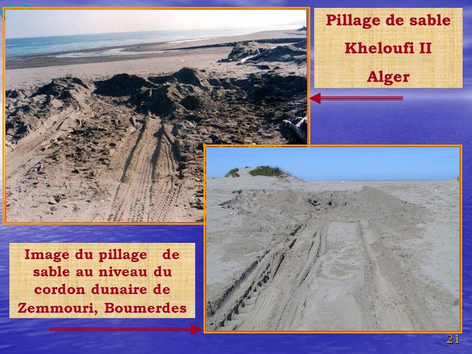 21 Pillage de sable Kheloufi II Alger Image du pillage de sable au niveau du cordon dunaire de Zemmouri, Boumerdes