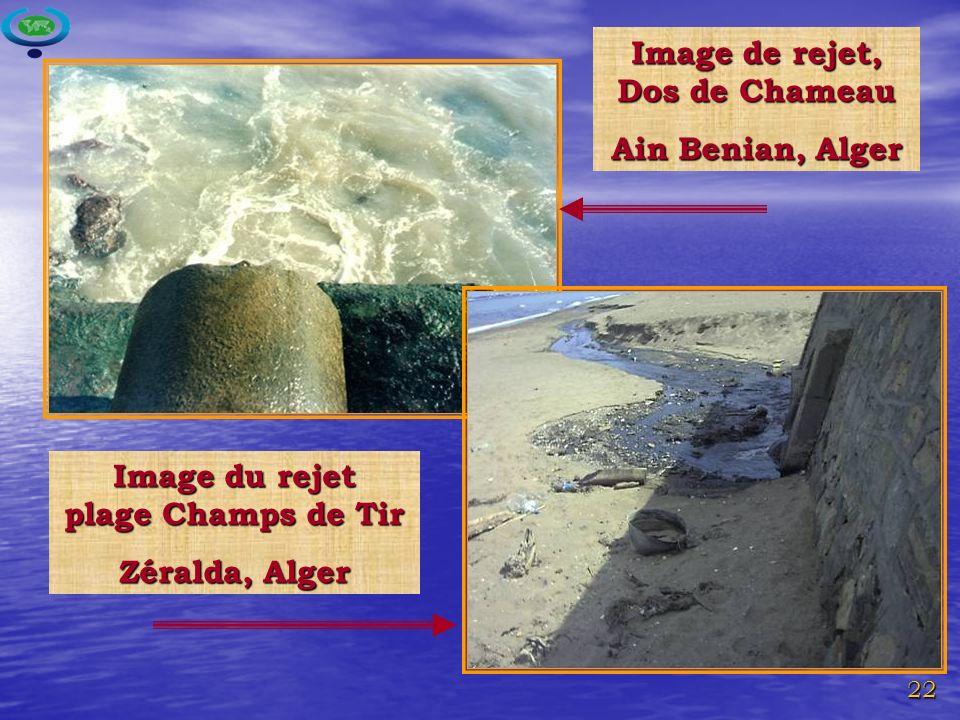 22 Image de rejet, Dos de Chameau Ain Benian, Alger Image du rejet plage Champs de Tir Zéralda, Alger