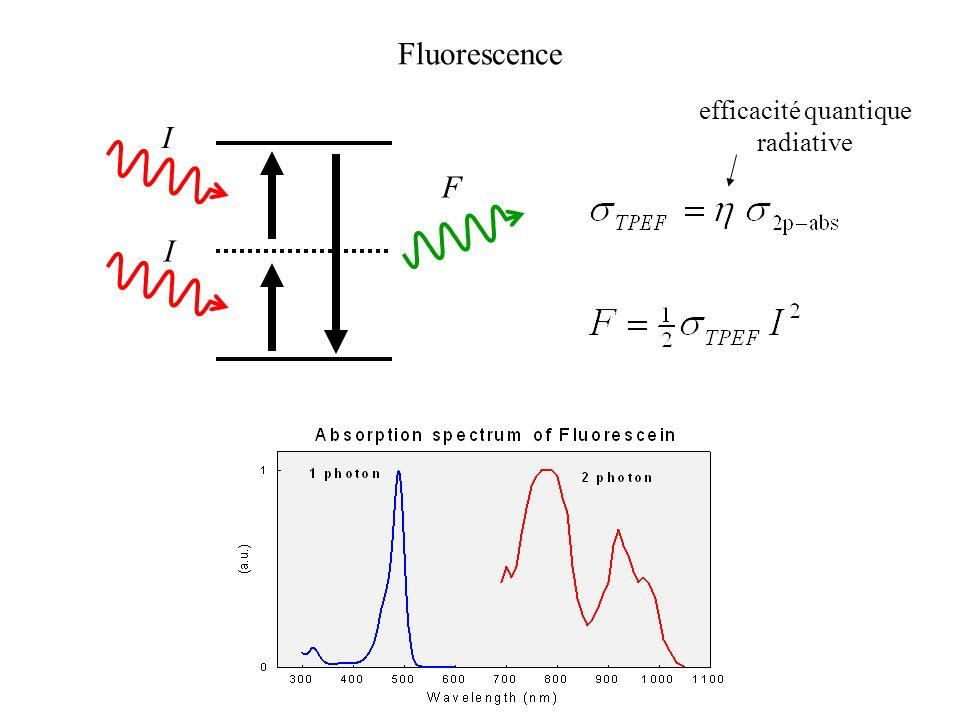 efficacité quantique radiative F I I Fluorescence