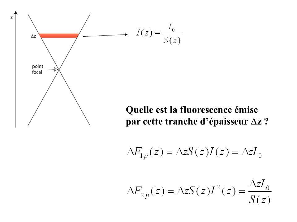 Quelle est la fluorescence émise par cette tranche dépaisseur z ?