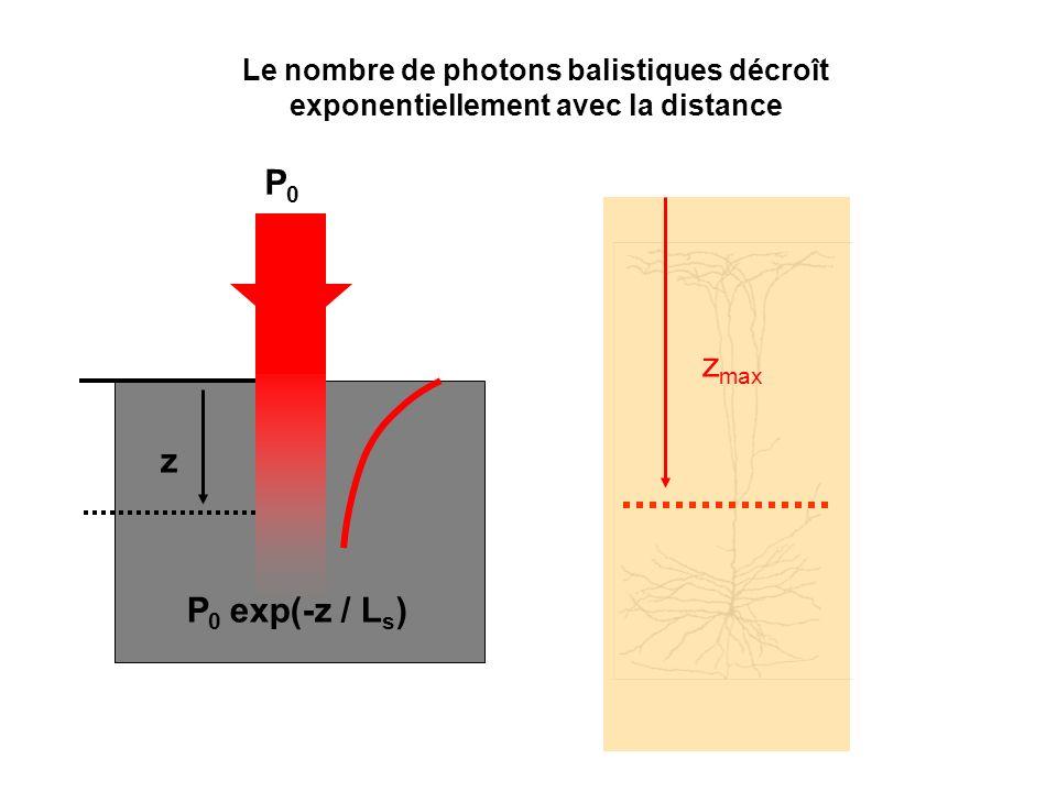 Le nombre de photons balistiques décroît exponentiellement avec la distance P0P0 z P 0 exp(-z / L s ) z max