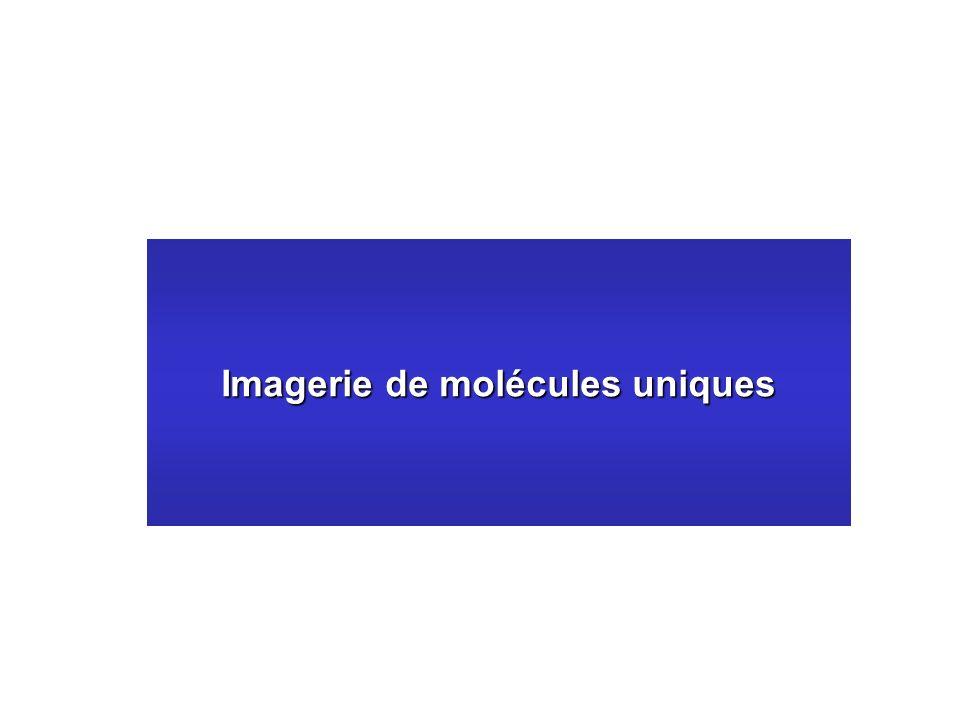 Imagerie de molécules uniques