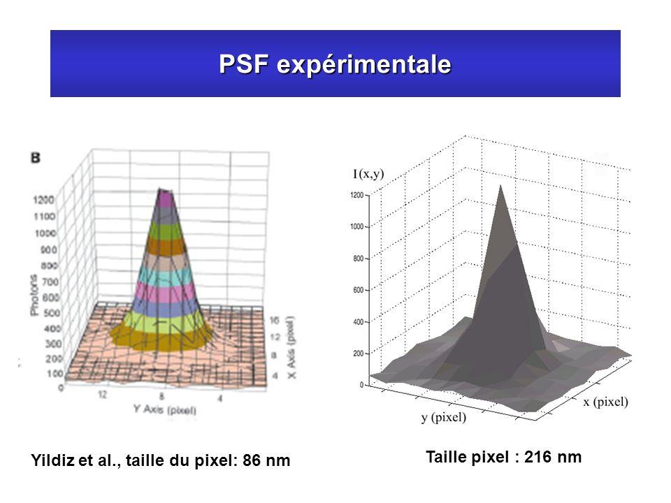 PSF expérimentale Yildiz et al., taille du pixel: 86 nm Taille pixel : 216 nm